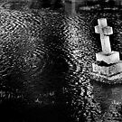 Flooded Graveyard - Southern England Febuary 2014 by Samantha Higgs