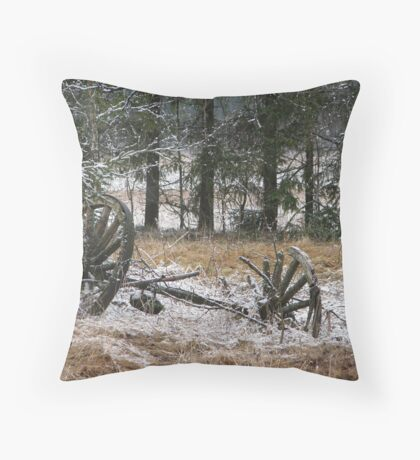 From another time Throw Pillow