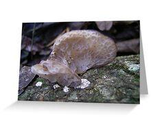 Auricularia Greeting Card