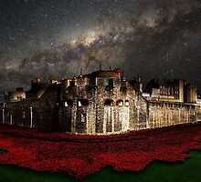 Starry Night  by J Biggadike