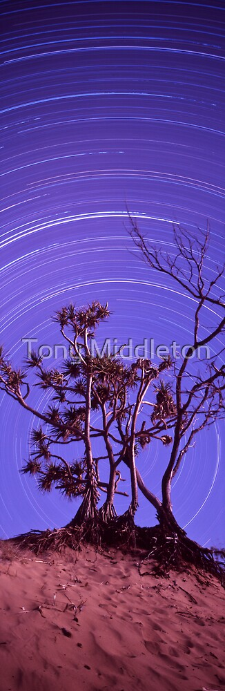 Pandanus star trails by Tony Middleton