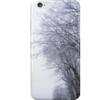 Hoarfrost in the mist iPhone Case/Skin