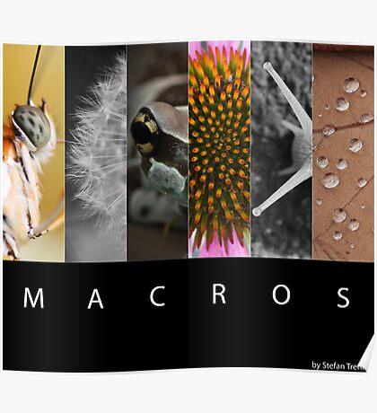 Macros Poster