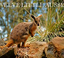 COVER FOR MY TWELVE LITTLE AUSSIES CALENDAR by Cheryl Hall