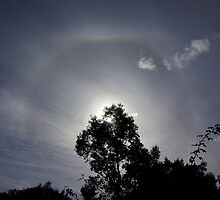 Sun halo on my doorstep! by Rosie Appleton
