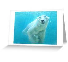 polar bear acrylic Greeting Card