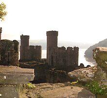 Conwy Castle by Faye Ashford