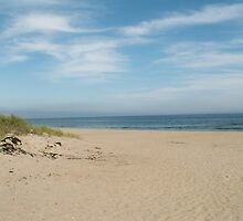 Seabrook Beach by Rpnzle