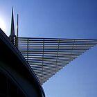 Milwaukee Art Museum by FireDzine