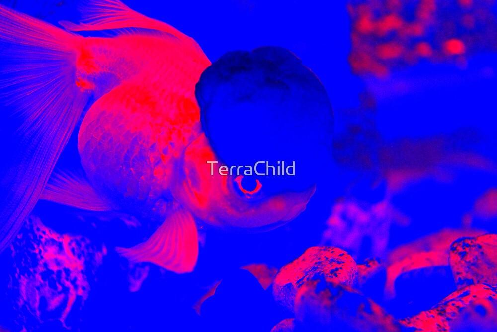 You Smart Little Fishie by TerraChild