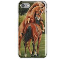Yearling colts at play iPhone Case/Skin