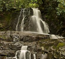 Laurel Falls  by solareclips~Julie  Alexander