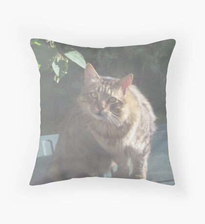 Wisdom in these eyes Throw Pillow