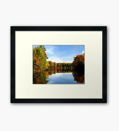 ~ Natures Natural Mirror ~ Framed Print