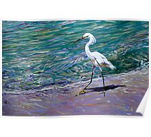 Snowy Egret on Beach Poster