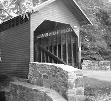 Roddy Creek Rd by A Bewley