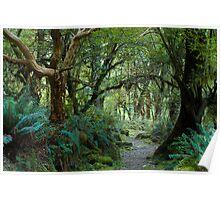 primeval forest on kepler track Poster