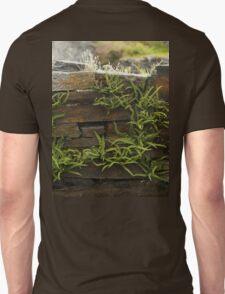 Spleenwort Maidenhair fern on wall at Cashelnagor T-Shirt