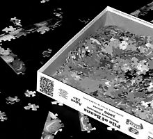 Puzzle in black and white by Tova Quinif