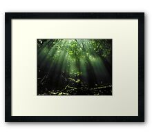 Cave Diving in Mexico Framed Print