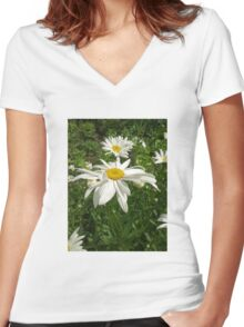 Chamomiles 3 Women's Fitted V-Neck T-Shirt
