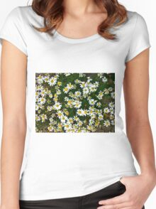 Little Chamomiles 3 Women's Fitted Scoop T-Shirt
