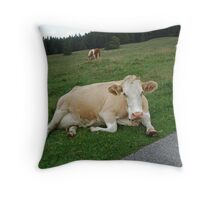 some rest at last! Throw Pillow