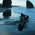 Liquid Landscape - Meyers Creek Beach - Oregon  by Harry Snowden