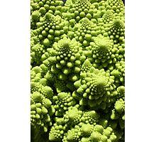 Green cauliflower Photographic Print