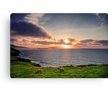 Dingle Peninsula, Co.Kerry, Ireland Canvas Print