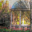 Stone Gazebo in the Venetian Gardens by Jane Neill-Hancock