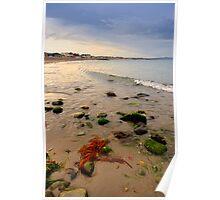 Wicklow Coastline Poster
