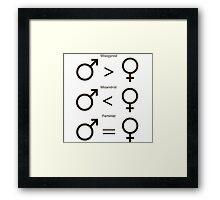 Misogynist, Misandrist, and Feminist Framed Print