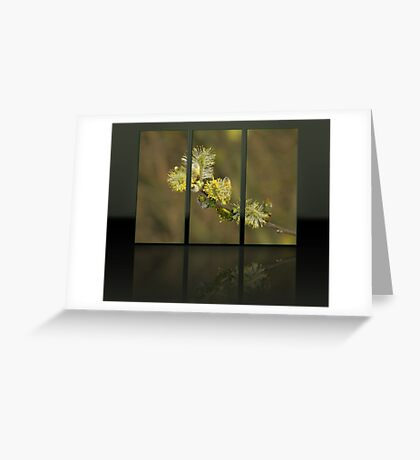 Triptych 4 Greeting Card