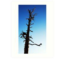 LONEY TREE Art Print