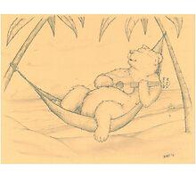 Ukelele Bear Photographic Print