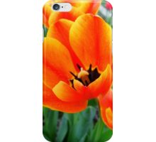 Bed Of Tulips iPhone Case/Skin