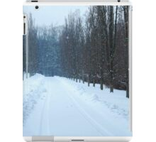 Falling Snow iPad Case/Skin
