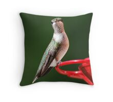 What are you doing??? Throw Pillow