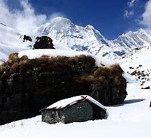 Cabin On The Mountain by aidan  moran
