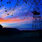 Dawn at the Farm by Michael McCasland