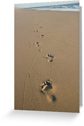 Footprints by Samantha Higgs