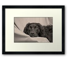 Can we please go home now? Framed Print