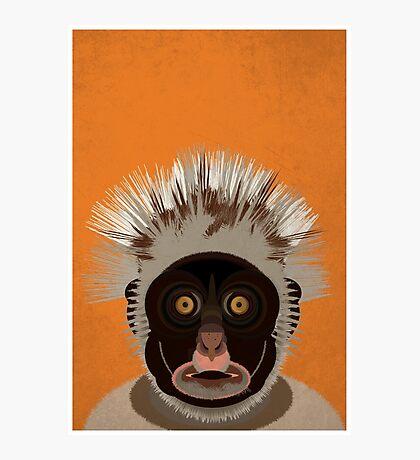 Red Colobus Monkey Illustration Photographic Print