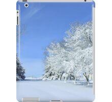 Freshly Fallen Snow iPad Case/Skin