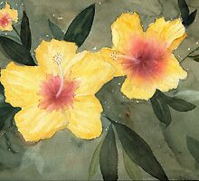 Hibiscus by Diane Hall