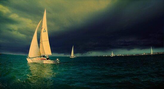 Storm Warning by Alf Caruana