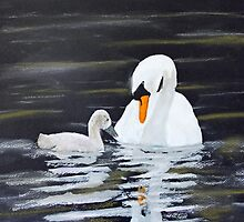 Swan Care by Jack G Brauer