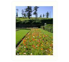 The Sunken Garden Art Print