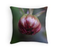 promise you won't forget me... Throw Pillow